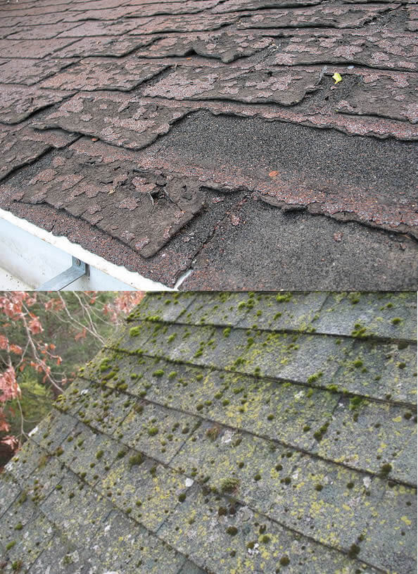Roof Repair in Flint, Grand Blanc Clio Michigan